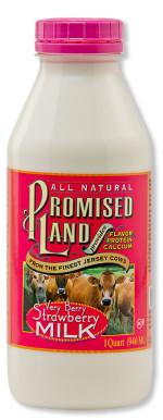 Very Berry Strawberry milk from Promised Land Dairy