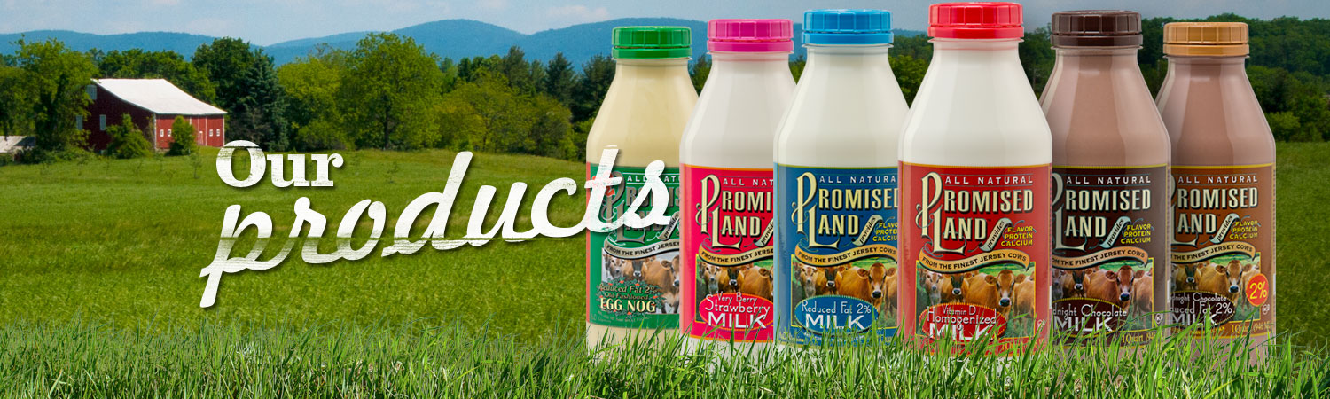 OurProducts-PageBanner-PromisedLandDairy