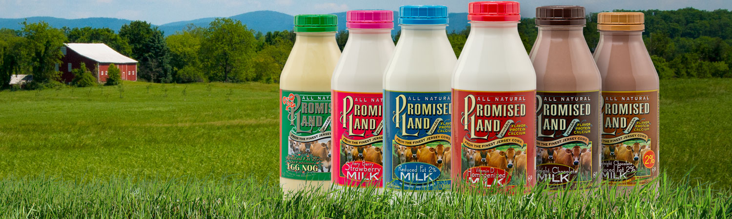 Bottle images of Promised Land Dairy's wide variety of available milk and cream products